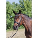 bridle-dressage dione4