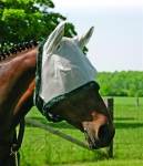 fly mask-century w ears4